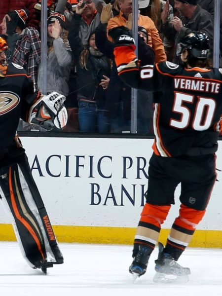 anaheim ducks team on ice