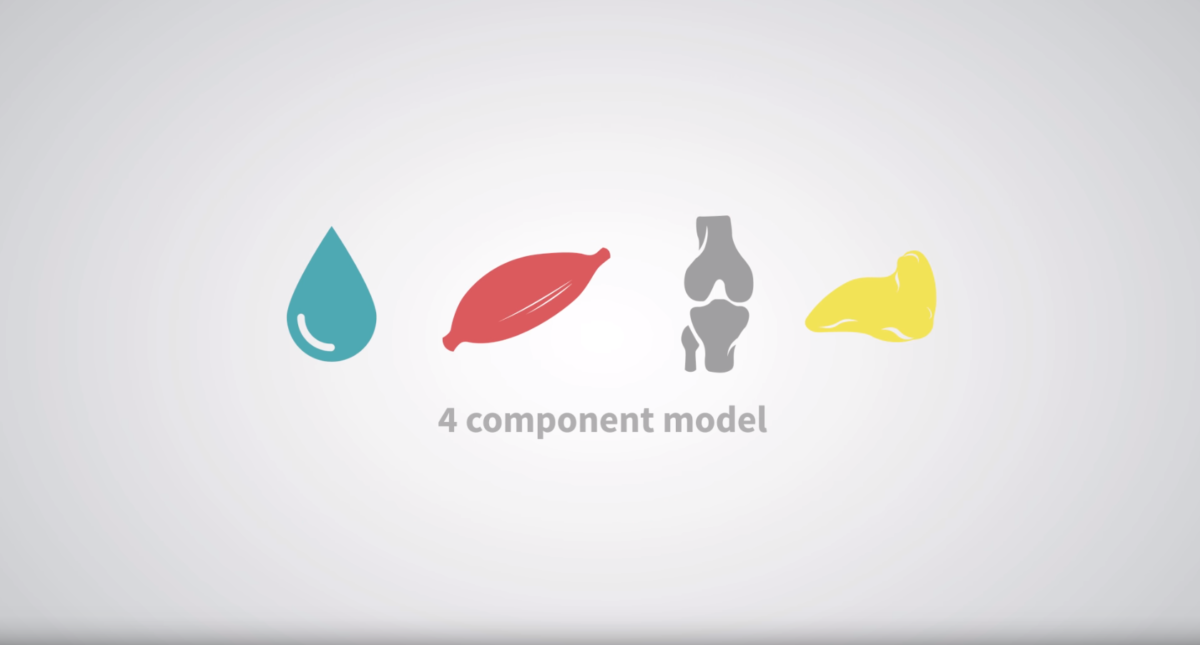 4 component models what is body composition video preview thumbnail