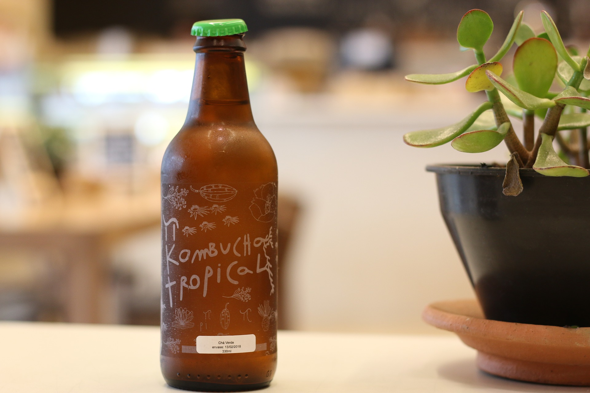 What Exactly Does Kombucha Do For You?