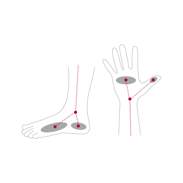 frequencies meeting at the wrist and ankle